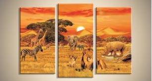 Модульные Африка 34