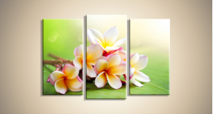 Модульные Цветы 19