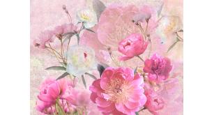 Фотоoбои Цветы 10