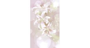 Фотоoбои Цветы 15