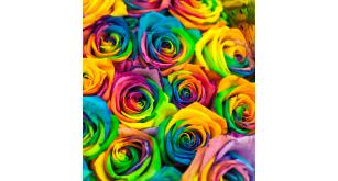 Фотоoбои Цветы 32