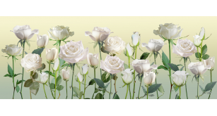 Фотоoбои Цветы 7