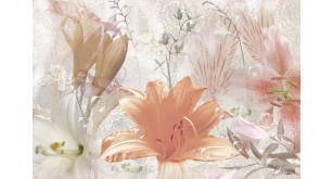 Фотоoбои Цветы 8