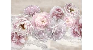 Фотоoбои Цветы 190