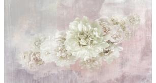 Фотоoбои Цветы 232