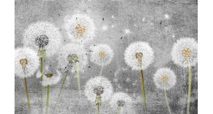 Фотоoбои Цветы 257