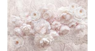 Фотоoбои Цветы 258