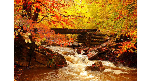 Осень 13