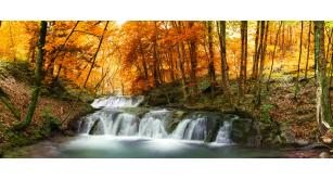 Фотоoбои Осень 14