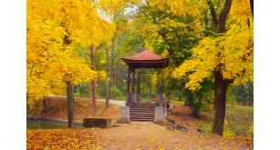 Фотоoбои Осень 31