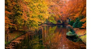 Фотоoбои Осень 47