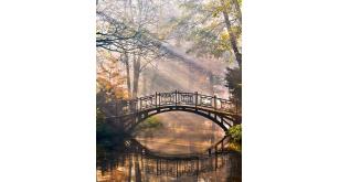 Фотоoбои Парки и сады 146