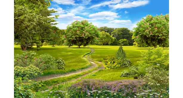 Парки и сады 152