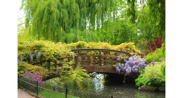 Парки и сады 153