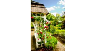 Фотоoбои Парки и сады 155