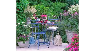 Фотоoбои Парки и сады 105