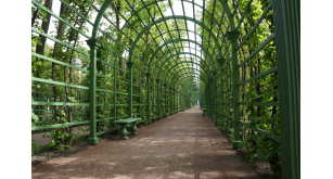 Фотоoбои Парки и сады 106