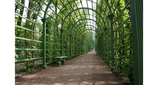 Парки и сады 106