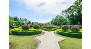 Фотоoбои Парки и сады 107