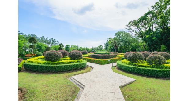 Парки и сады 107