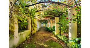 Фотоoбои Парки и сады 108
