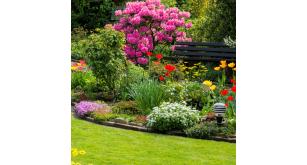Фотоoбои Парки и сады 111