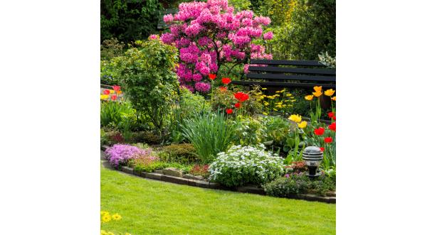 Парки и сады 111