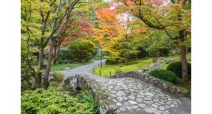 Фотоoбои Парки и сады 116