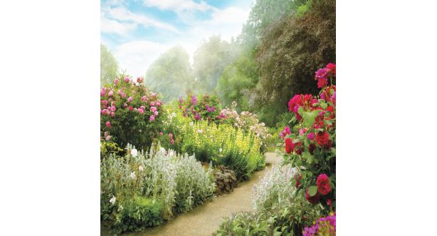 Парки и сады 119