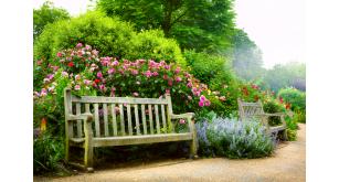 Фотоoбои Парки и сады 120