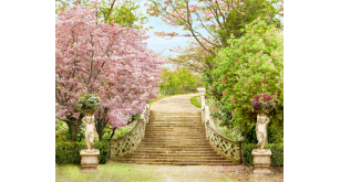 Фотоoбои Парки и сады 136