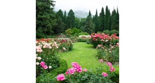 Фотоoбои Парки и сады 44