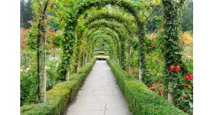 Фотоoбои Парки и сады 47
