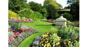 Фотоoбои Парки и сады 58