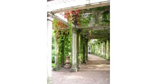 Фотоoбои Парки и сады 83