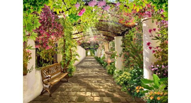 Парки и сады 9