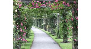 Фотоoбои Парки и сады 91