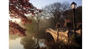 Фотоoбои Парки и сады 92