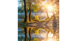 Фотоoбои Природа 42