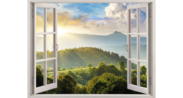 Вид из окна 25