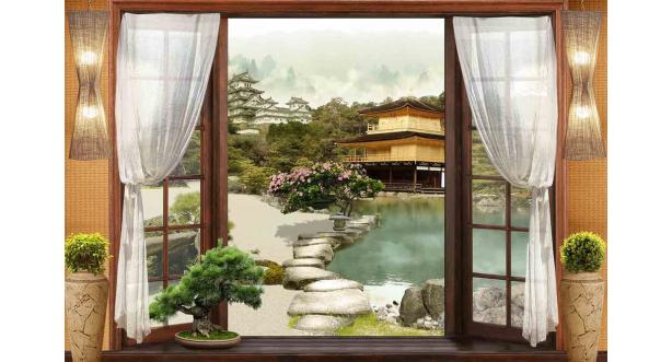Вид из окна 6