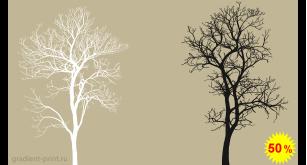 Фотообои - Деревья